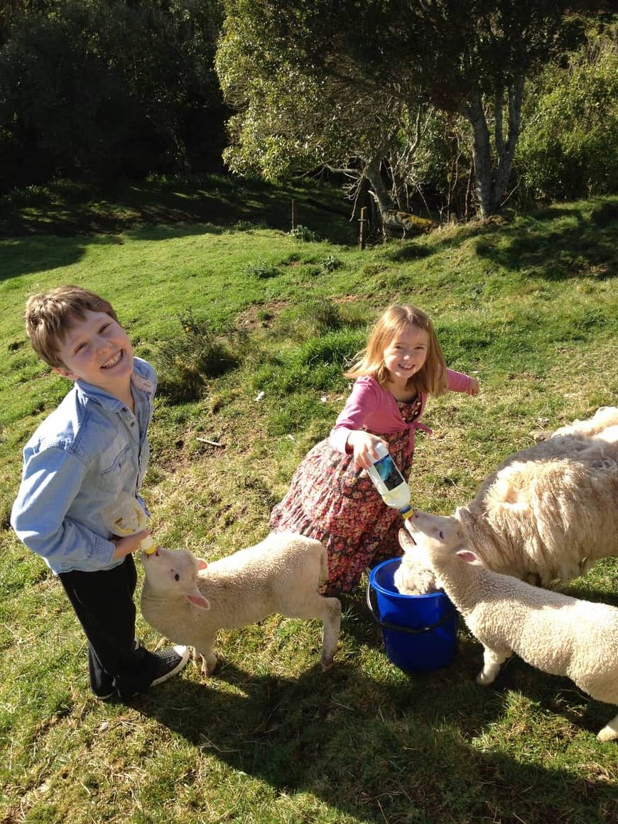 After emigrating to New Zealand my children feel as though they are living differently