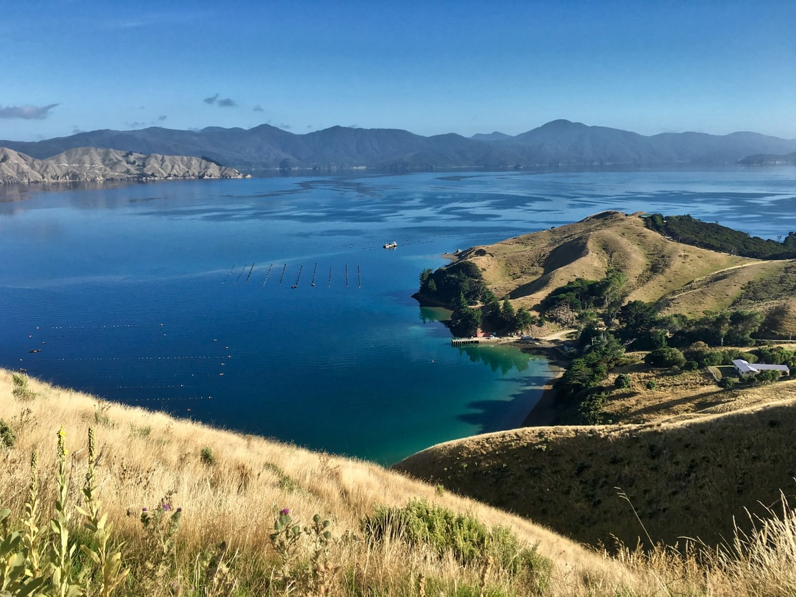 A travel blog about living the dream In new Zealand