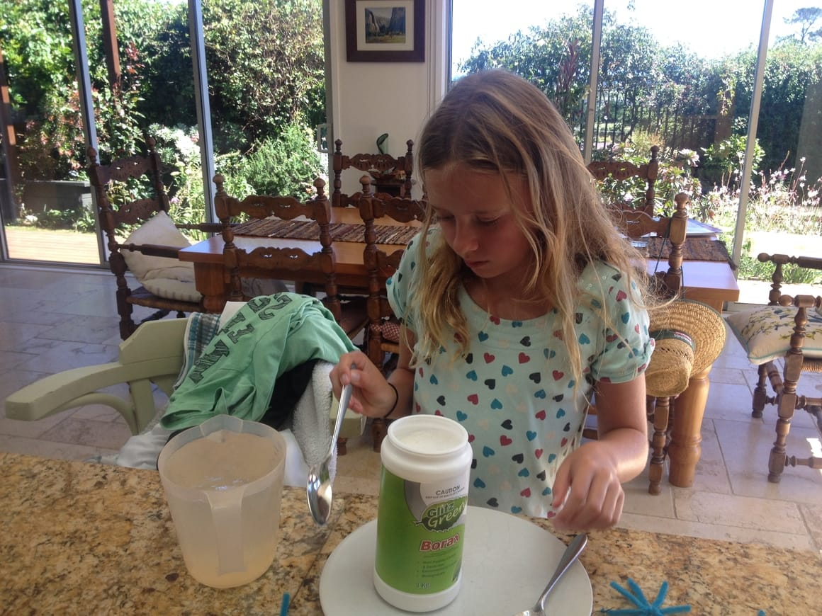 A science project for a homeschool girl