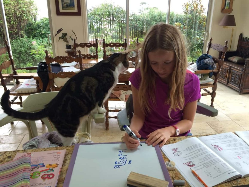 Girl with a cat Homeschooling