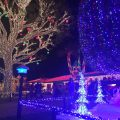 See the Christmas lights from the deck of your Fort Lauderdale tours taxi.