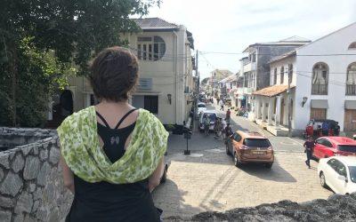 The Bog Diary #2. Sri Lanka Travel Blog.