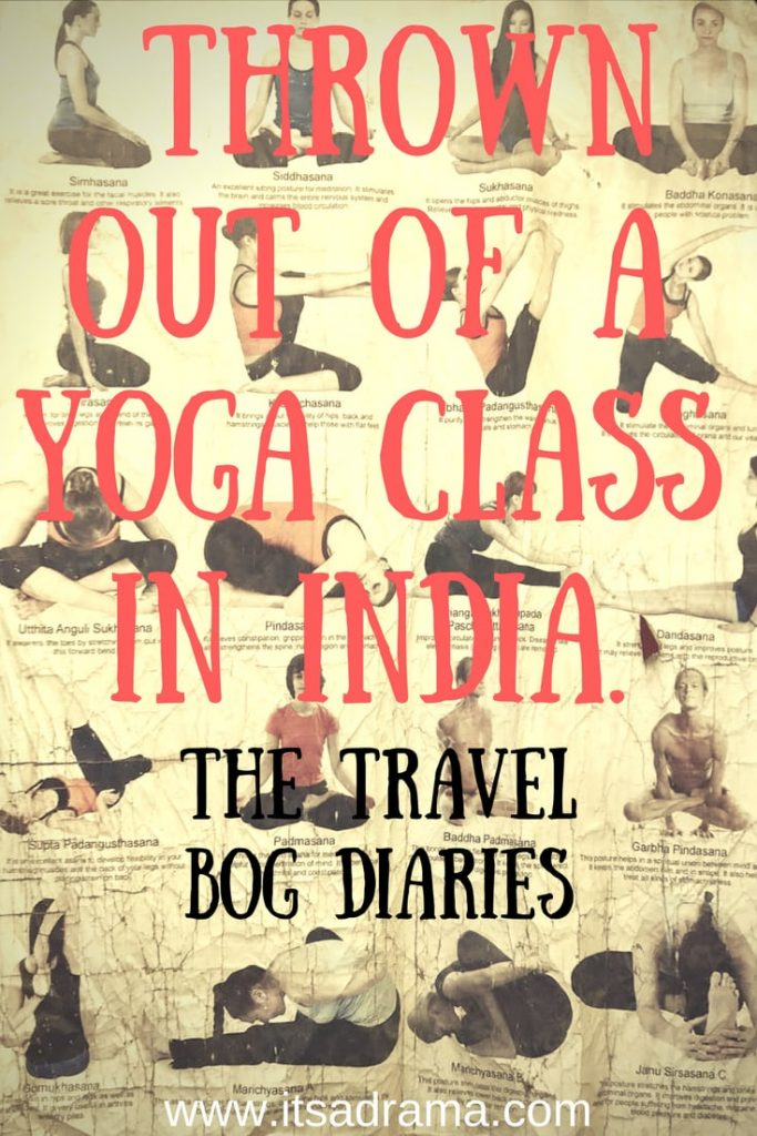 The travel Bog Diaries