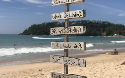 Mirissa Beach Sri Lanka. 10 Things To Know About Paradise.