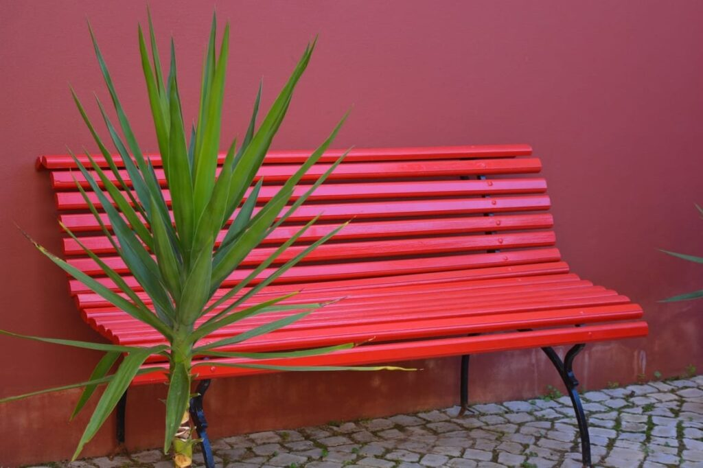 red bench in Venice