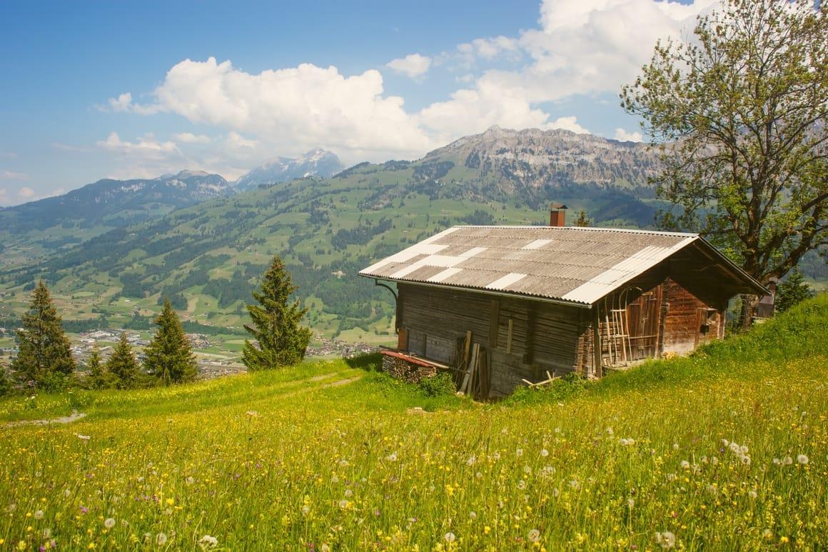 Beautiful cabin in the woods. Benefits of homeschooling