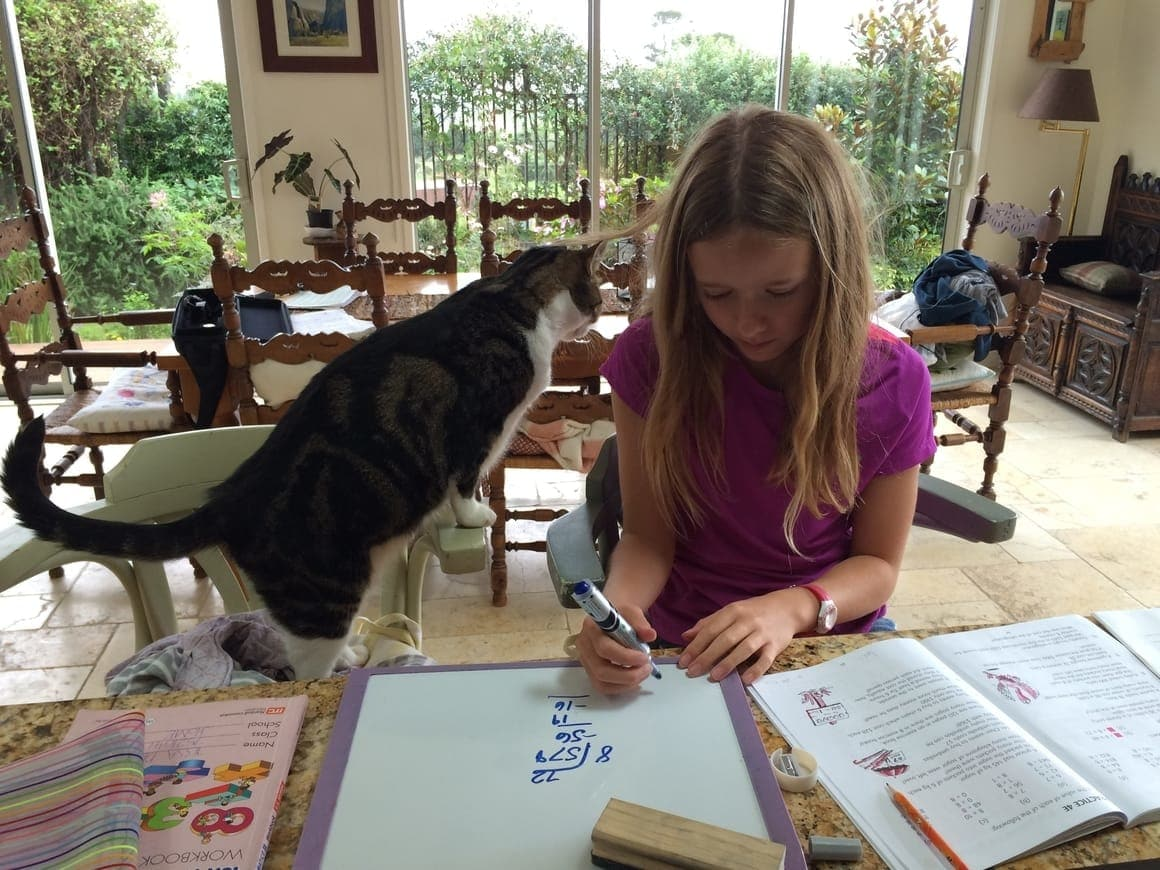 Girl homeschooling with her cat