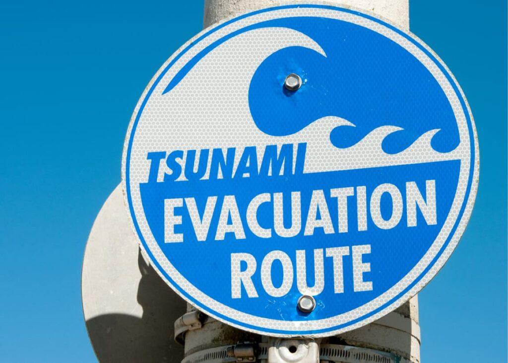 Tsunami evacuation sign in New Zealand. Scary things.