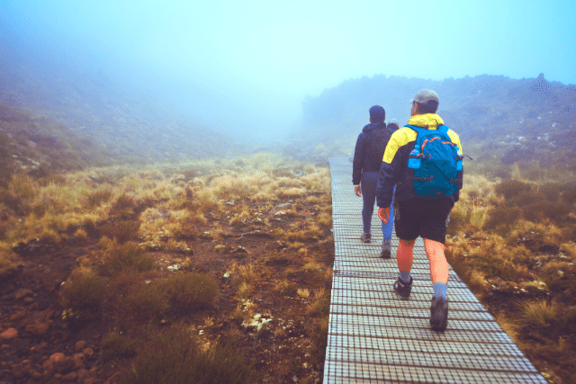 Is New Zealand NEGLECTING These 7 (Essential) Life Skills?