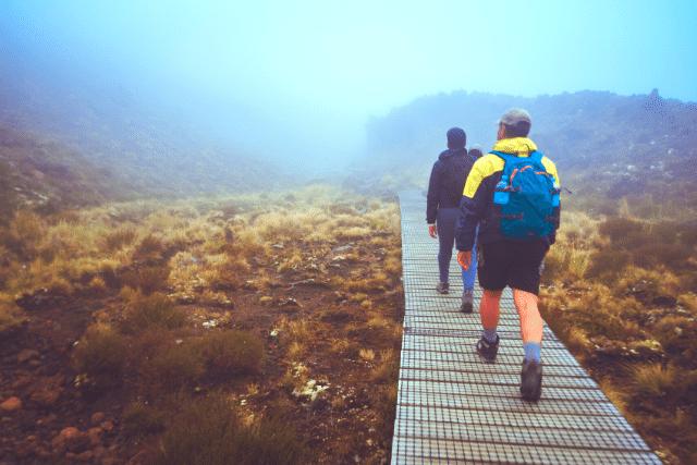 People walking in New Zealand