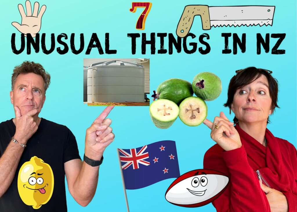 Unusual things in New Zealand