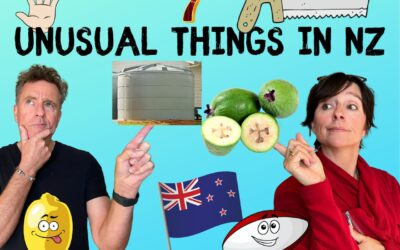 Really?? 7 Weird Things About New Zealand