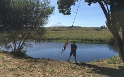 Raising Your Kids In New Zealand