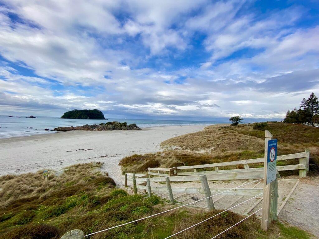 The Coromandel in new zealand beach