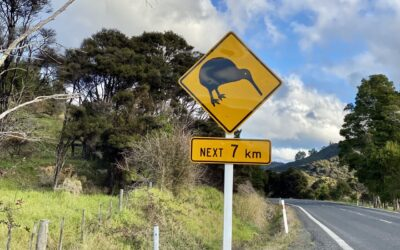 7 Ludicrous Misconceptions About New Zealand
